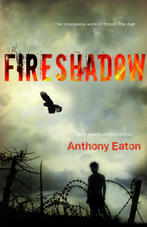 Fire shadow book